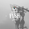 on-s-en-fish-carpstagram-best-of-instagram-peche-carpe-4