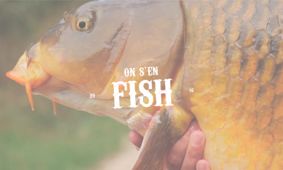 on-s-en-fish-dernieres-videos-carpe-a-voir