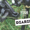 on-s-en-fish-diaries-1