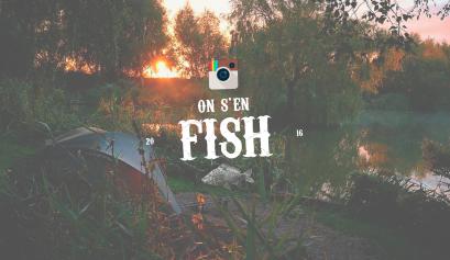 on-s-en-fish-header-carpstagram_9