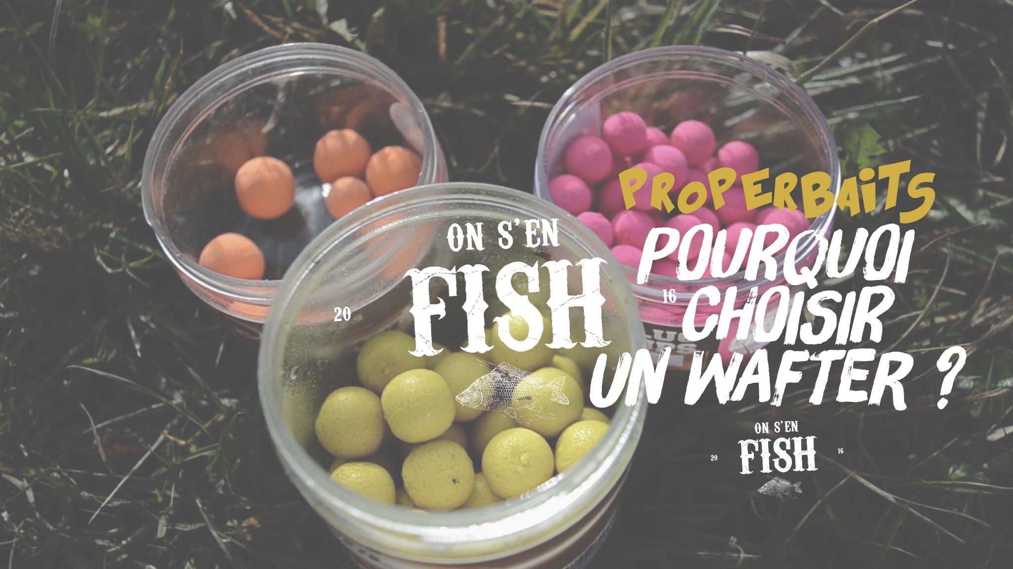 on-s-en-fish-header-PROPERBATS-2-wafter