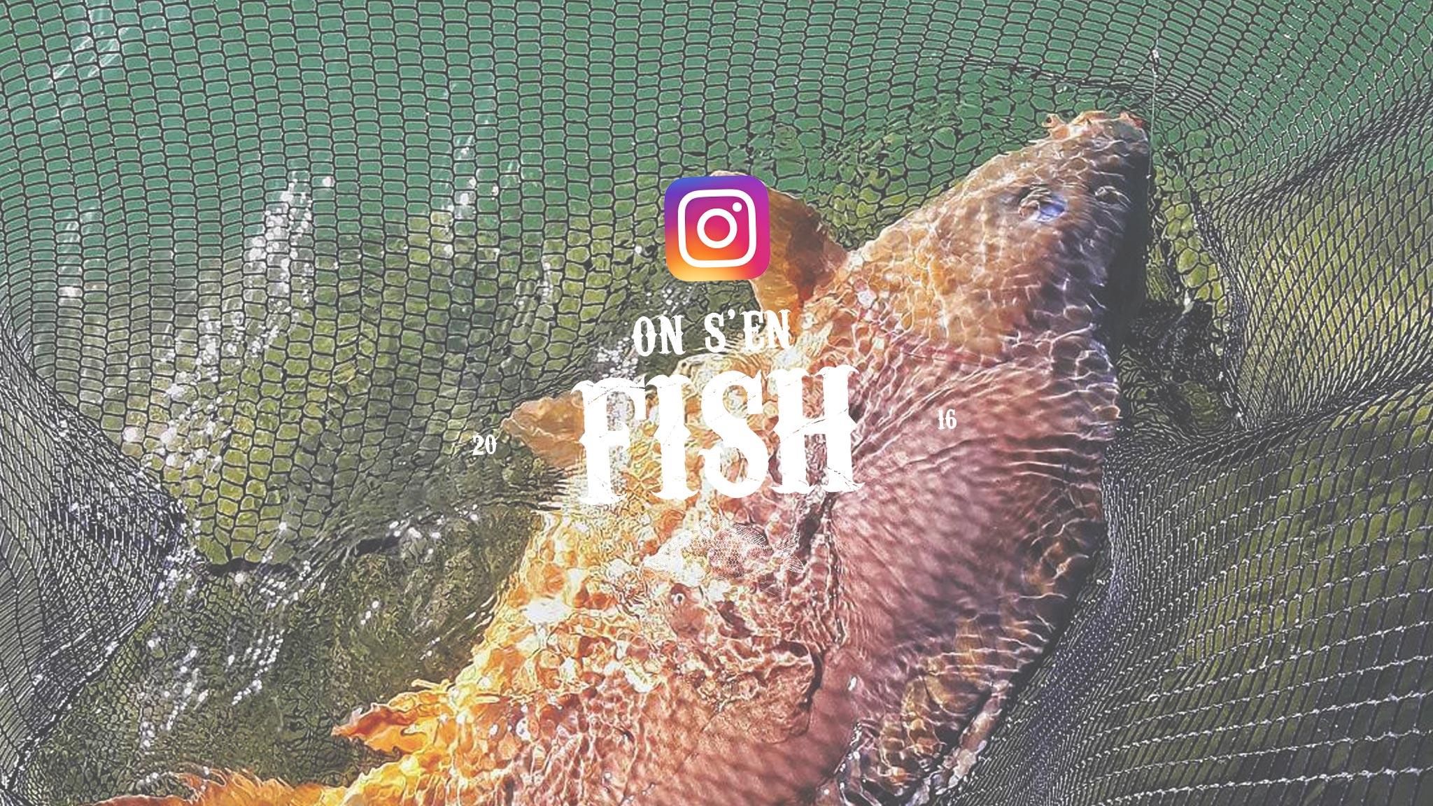 on-s-en-fish-header-carpstagram-16-best-of-peche-carpe-instagram