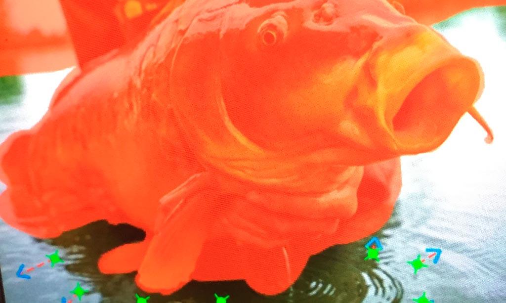 on-s-en-fish-galerie-article-plotagraph-peche-carpe-exemple-4