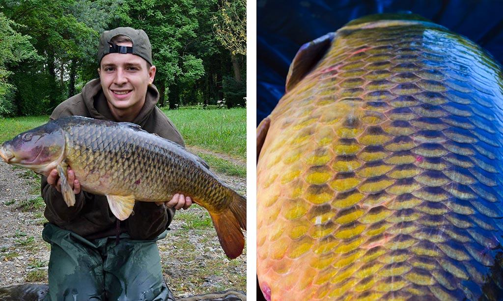 on-s-en-fish-header-article-peche-carpe-seine-paris-2